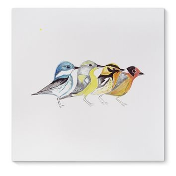FINCHES IN MOUNTAIN POSE Canvas Art By Birds Doing Yoga