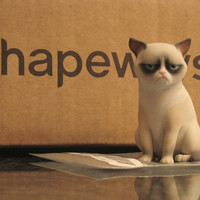 Grumpy Cat by ManuelPoehlau on Shapeways