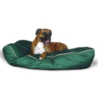 35x46 Green Super Value Dog Bed-Large