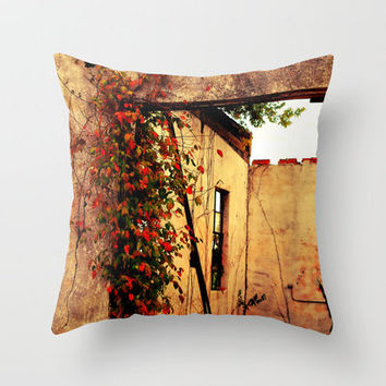 Old Abandoned Building And Flowers In Kentucky Throw Pillow by Stacy Frett