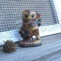 Colorful, Outdoorsy Vintage Owl Statue/Figurine~Retro Cabin Decor/The Owls Know