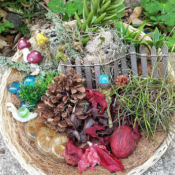 Fairy Garden Kit, Fairy Garden Supplies, Fairy Kits, Fairy House Kit, Miniature Garden Supplies, Terrarium Kit, Miniature Garden Items,