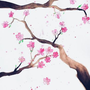 Cherry Blossoms by duckyb on Crated