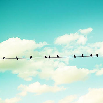 birds on a wire photography birds nature blue sky fine art photography 8x10 8x12 teal art print aqua cream sky clouds birds in flight summer