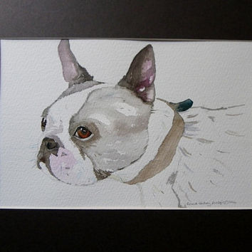 Cute Boston Terrier - Dog Painting -  Mounted Watercolor by Richard Harvey Allsop