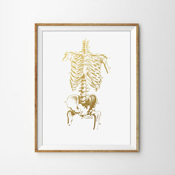 Faux Gold Foil Skeleton Art Print. Anatomy Decor. Human Anatomy. Medical Decor. Scientific Print. Modern Wall Art. Minimalist Decor.