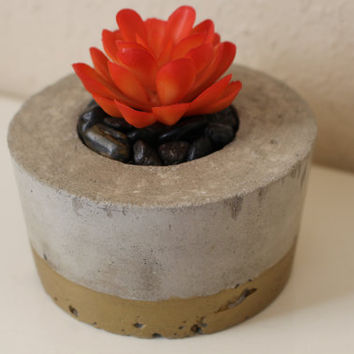 Cement Succulent Plant Pot Gold Painted Modern House Planter Decoration with Drainage Hole