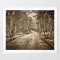 The way to the forest Art Print by Guido Montañés
