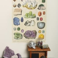 Mineralogie Poster - Interior at Gypsy Warrior