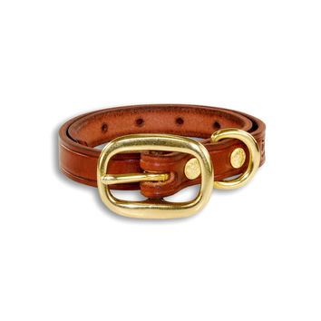 "3/4"" Field Leather Dog Collar (Puppy or Small Dog)"