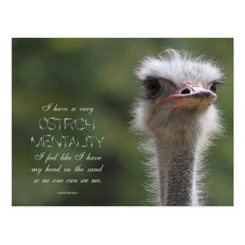 Animal Image Quote Postcard - Ostrich Mentality
