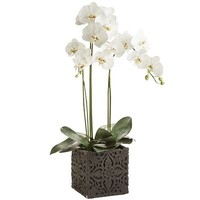 Oversized Faux Orchid Arrangement