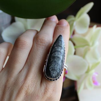 Size 10 - Orthoceras Silvertone Ring