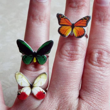 butterfly rings Set of 3 butterfly jewelry adjustable band statement ring great Gift Idea