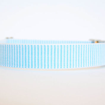 Seersucker Dog Collar in Sky Blue