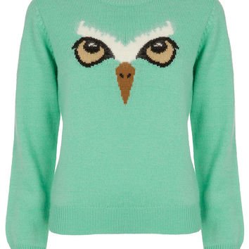 Owl Face Jumper By Emma Cook For Topshop - Sale - Sale & Offers - Topshop USA