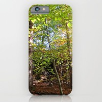 MM - Autumnally forest iPhone & iPod Case by Pirmin Nohr