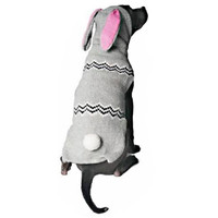 Chilly Dog Bunny Hoodie Dog Sweater