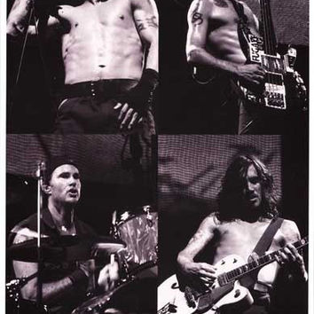Red Hot Chili Peppers Band Poster 11x17