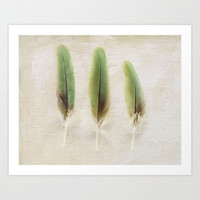 Green Feathers Art Print by Pure Nature Photos