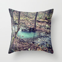 Forest Pond Throw Pillow by artfulanml