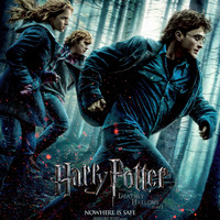 Harry Potter and the Deathly Hallows: Part 1 (2010) UV Poster 27 x 40 v11