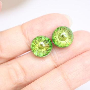 Dried green daisy stud earrings, resin flowers, Sterling Silver Real Dried Plant, Natural, Eco friendly, Everyday Jewelry, Spring, Summer