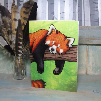 Red Panda Illustration Notebook Lined Pages