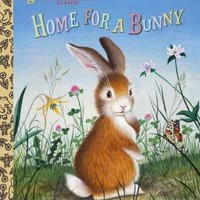 Home for a Bunny (Little Golden Books)