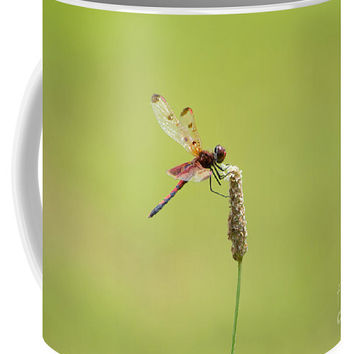 Calico Pennant Dragonfly Coffee Mug
