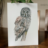 Archival Print of beautiful watercolour Great Grey Owl painting glicee