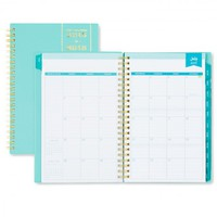 Day Designer Blue Weekly/Monthly 5 x 8 Planner July 2015 - June 2016