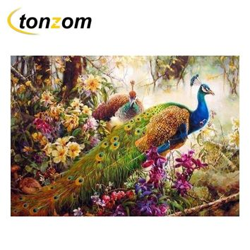 RIHE Elegant Peacock Diy Painting By Number Abstract Bird Oil Painting On Cuadros Decoracion Acrylic Drawing Mountain Wall Art