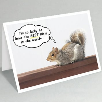Mother's Day card / Happy Mothers Day / Mom birthday card / the BEST Mom in the world - Cute squirrel cards - Funny animal cards