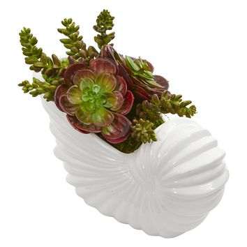 Artificial Plant -Succulent Garden Plant with Shell Planter