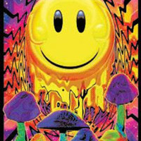 Have a Nice Trip Flocked Blacklight Poster Photo at AllPosters.com
