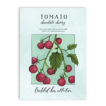 Chocolate Cherry Tomato Seed Packet