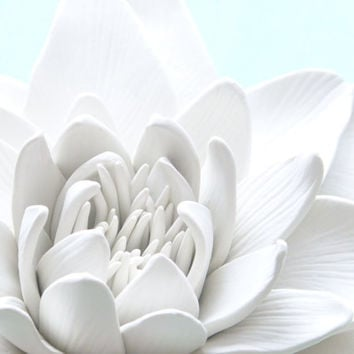 Water Lily Wall Sculpture - White Lily Flower