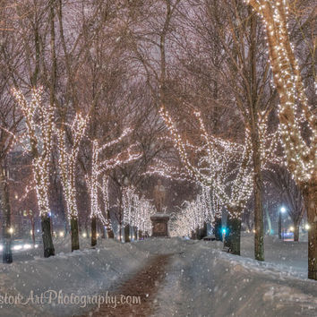Commonwealth Ave Mall in Boston Massachusetts during a Snowy Winter