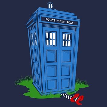 Wicked Tardis