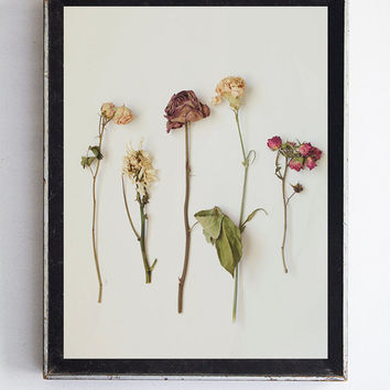 Dried Floral Arrangement Still Life Photography Spring Home Decor Wall Art Decor Nature Decor Garden Photography