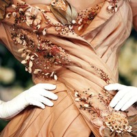 apricot and details
