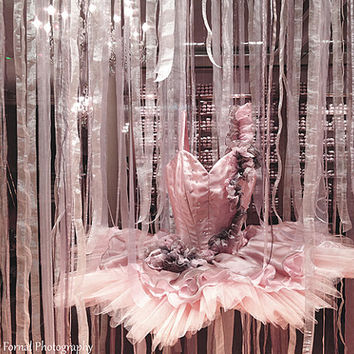 Paris Photography, Ballet Dress, Paris Repetto Ballerina Shop, Parisian Window Ballet Tutu, Paris Ballerina Shop, Paris Pink Ballerina Art