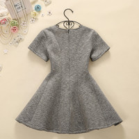 A-Line Pleated Gray Dress