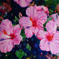 """Giclee print on canvas, matted - Hibiscus - 8"""" x 10""""  - Signed/Editioned"""