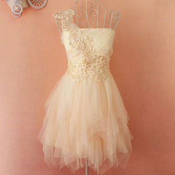 A 083124 Embroidery lace tutu dress
