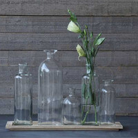 Glass Bottle Vases Set