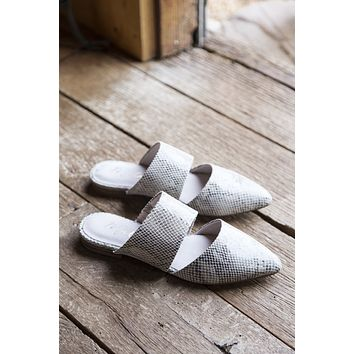 Berlin Natural Snake Shoes, Taupe Snake | Coconuts by Matisse