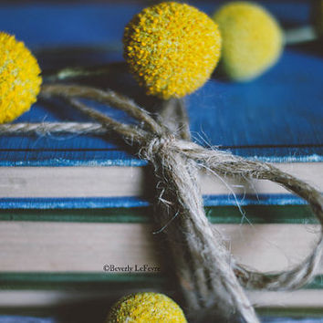 yellow, blue, flowers, vintage books, fine art photography