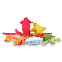 Under The Sea 5 Piece Dog Toy Collection